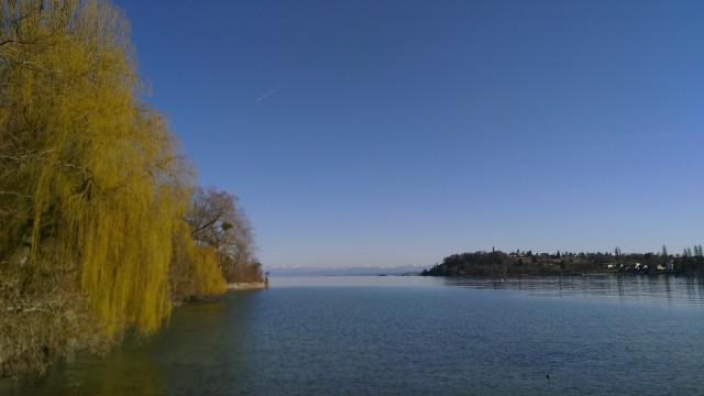 Bodensee mit den Alpen in Hintergrund