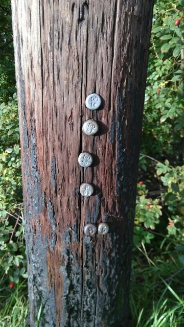 Markierungen im Mast.