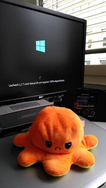 """Computer mit der Meldung """"Laufwerk C: wird überprüft und repariert"""". Vor dem Monitor liegt eine Plüschfigur mit einem missmutigen Gesicht"""
