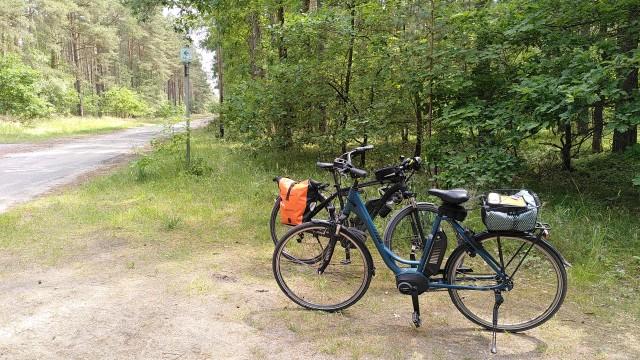 Zwei Fahrräder im Wald am Rand einer Strecke