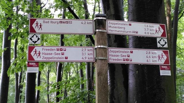 Wanderwegweiser, bei dem es in alle Richtungen zum Zeppelin-Stein geht - von dem wir kommen.