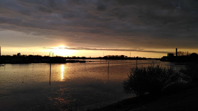 Blick auf die untergehende Sonne über einem Seitenarm der Elbe mit Natur und Kränen im Hintergrund