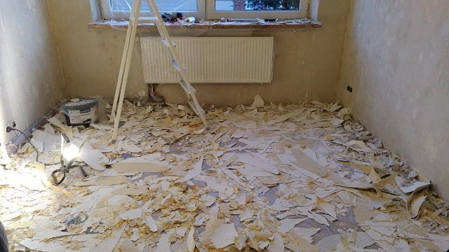 Raum mit kahlen Wänden, Tapetenschnipsel auf dem Boden, eine Leiter im Hintergrund