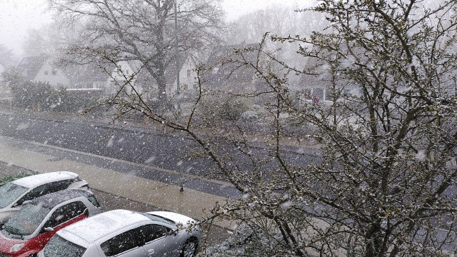 Straße im Schneegestöber