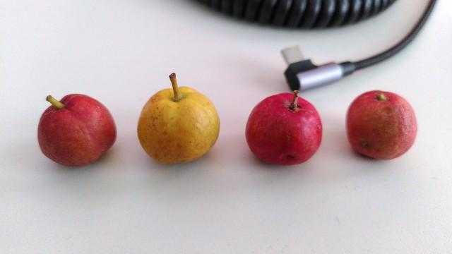 Mini-Äpfel auf Schreibtisch vor USB-Kabel als Größenreferenz
